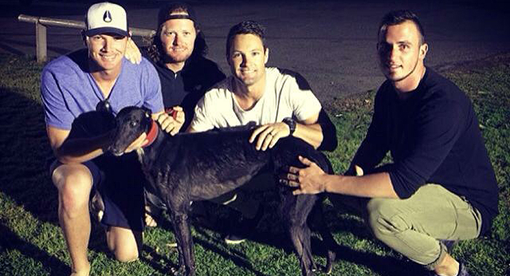 Players (from L to R) Matt Kennelly, Josh Kennelly, Tim Kennelly and Adam Millson with dog Locksley Road. (via Matt Kennelly)