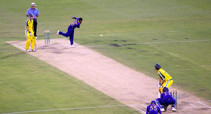 Cricket-flickr-rae-allen-2